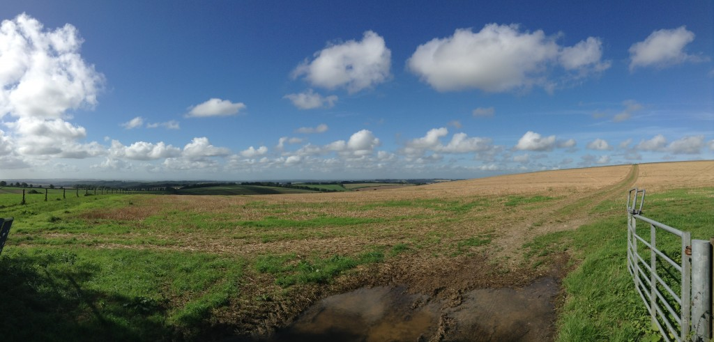 Old Winchester Hill panorama